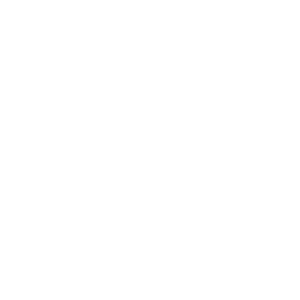 white globe icon with transparent background