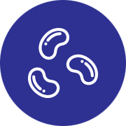3 soya bean white icon with blue circle background